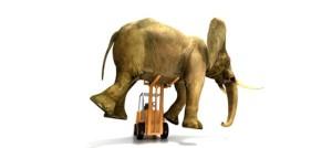 elephant_forklift